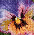 Click for more details of Pansy - Blue and Yellow (cross stitch) by Thea Gouverneur