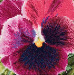 Click for more details of Pansy - Mauve (cross stitch) by Thea Gouverneur
