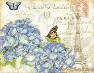 Click for more details of Paris Hydrangea (cross stitch) by Dimensions