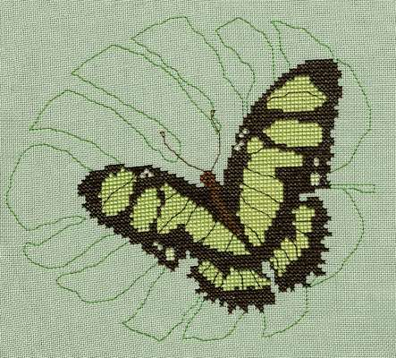 Click for more details of Peruvian Malachite Butterfly (cross stitch) by Anne Peden