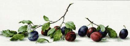 Click for more details of Plums (cross stitch) by Luca - S
