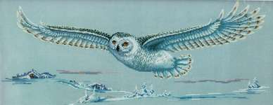 Click for more details of Polar Owl (cross stitch) by Andriana
