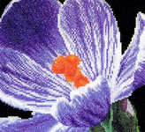 Click for more details of Purple Crocus (cross stitch) by Thea Gouverneur