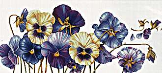 Click for more details of Purple Pansies (cross stitch) by Needleart World