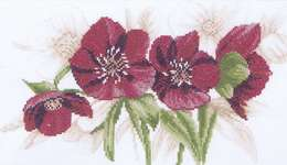 Click for more details of Red Hellebores (cross-stitch kit) by Lanarte