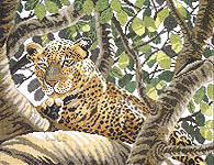 Click for more details of Serengeti Leopard (cross-stitch kit) by Lanarte