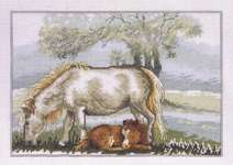 Spring - Horse with Foal