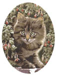 Click for more details of Tabby Kitten (cross stitch) by John Stubbs