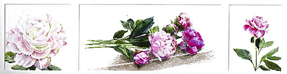 Click for more details of Triptych of Peonies (cross stitch) by Thea Gouverneur