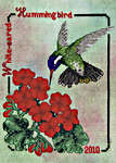 Click for more details of White-eared Hummingbird (cross stitch) by Crossed Wing Collection