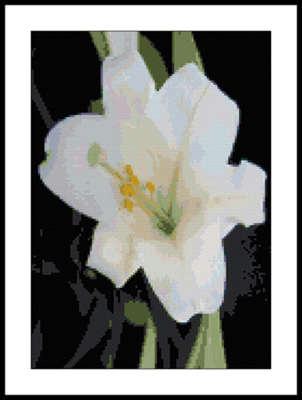 Click for more details of White Lily (cross-stitch pattern) by Mary Gaines