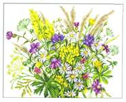 Click for more details of Wild Flowers (cross stitch) by RTO