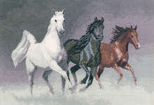 Click for more details of Wild Horses (cross stitch) by John Clayton
