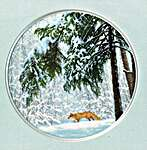 Click for more details of Winter Forest (cross stitch) by Golden Fleece