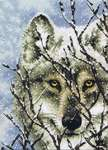 Click for more details of Wolf (cross stitch) by Dimensions