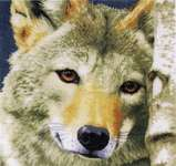 Click for more details of Wolf (cross stitch) by Lanarte