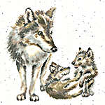 Click for more details of Wolf Pack (cross stitch) by Bothy Threads