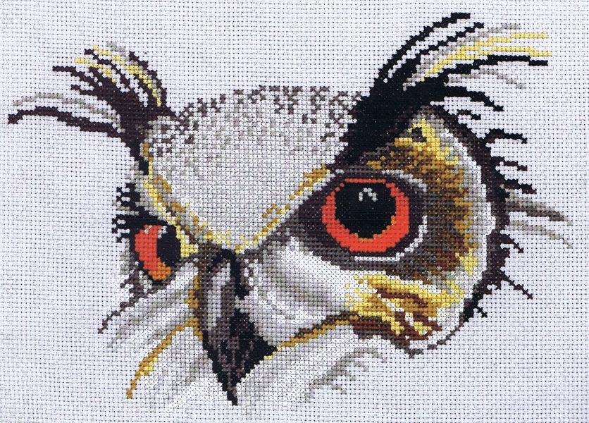 Eagle Owl Cross Stitch Kit By Classic Embroidery