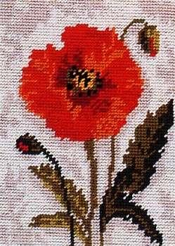 Tapestry Kit Poppy Scape Size: 30 x 22 cm Anchor KT126K