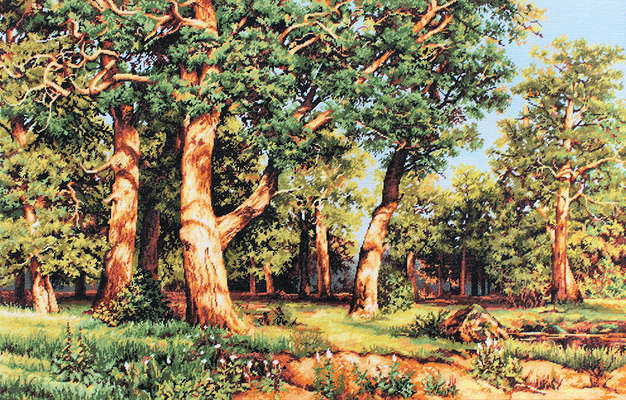 The Oak Grove