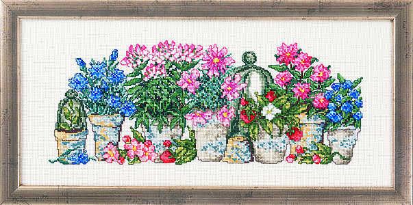 Six pot plants - click for larger image