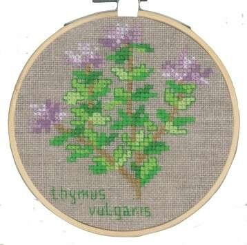 Thyme - click for larger image