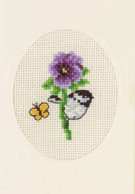 Pansy - click for larger image