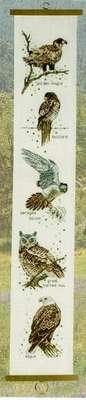 Hawk Hanging - click for larger image