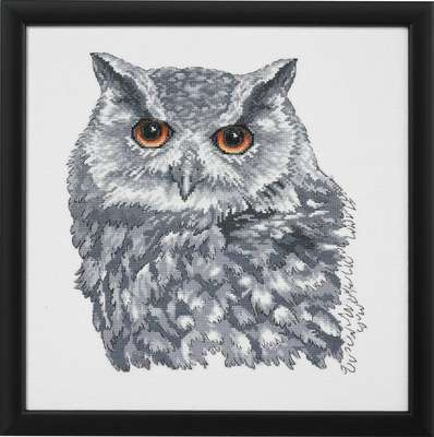 Owl in Grey