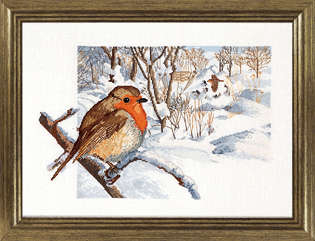Winter Robin - click for larger image