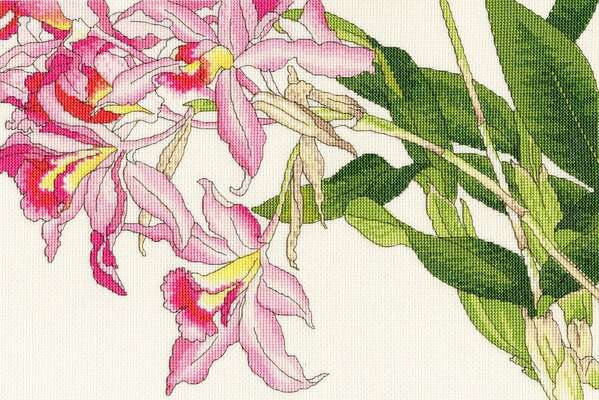 Orchid Blooms - cross stitch kit by Bothy Threads